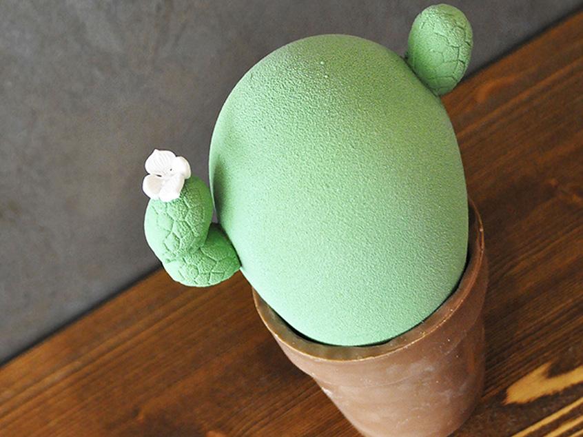 Cactus-Pasqua 2019